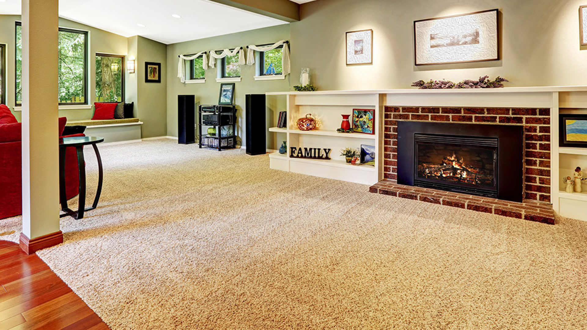 918 CARPET CLEANING